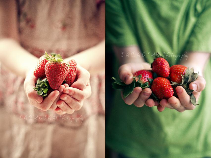Erdbeeren-Lacaosa