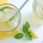 basilikum, basil, limetten, lime, limonade, lemonade, 9qj86.w4yserver.at