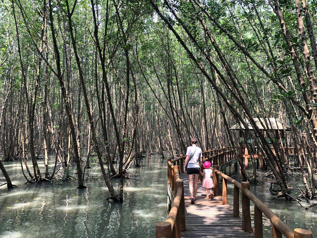 Mangrovenwälder im Mu Kho Chumphon Nationalpark, Thailand
